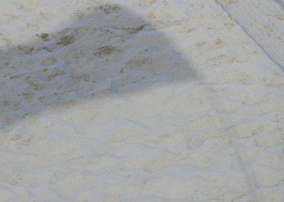 bellaria 2018image016